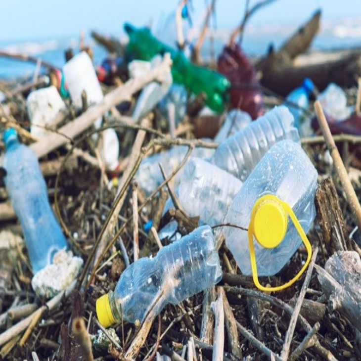 Pahlawan Lingkungan: Selamatkan Bumi dari Sampah Plastik!